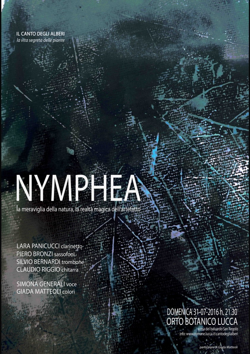 Nymphea copia